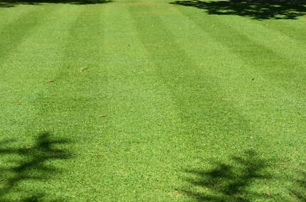 Top Quality Lawnmowing Business for Sale Attadale Melville Area Preview