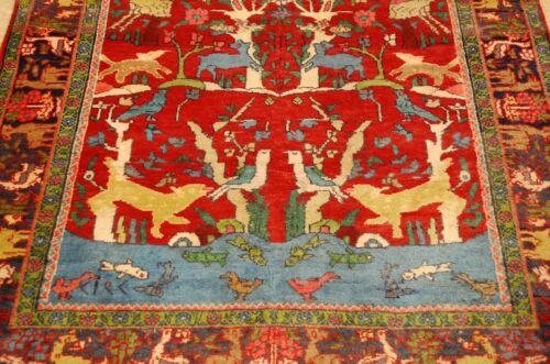 Circa 1920s Antique Detailed Tree Of Life Persian Bijar Rug 4.3x6.9 High Kpsi