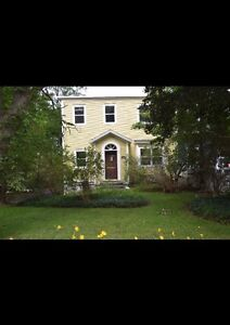 Downtown room for rent in beautiful clean home  St. John's Newfoundland image 1