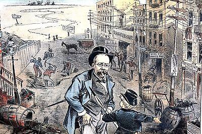 Central Park Vs Inner City Slums 1885 Slaughterhouse Garbage Dump Soap Factory