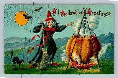 HALLOWEEN Vintage Postcard Witch Moon Black Cat Pumpkin Kettle Fire Red Hat