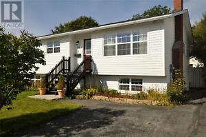 With In Law Apartment Houses Townhomes For Sale In St John S