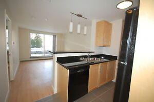 Great 1 Bed, 6 Appliances on Tower Apts! AVAIL OCTOBER