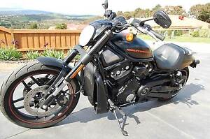 2015 Harley Davidson Night Rod Special Brunswick Moreland Area Preview