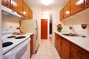 Avail NOW  1 Spacious 1 Bedroom. 50% off September Rent
