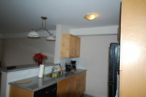 Great 1 Bedroom +Den, WSuites! Avail April