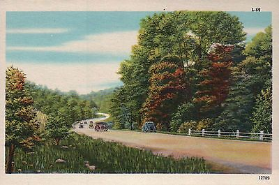 A Highway with Cars, Trees etc. - Beautiful Old Vintage Standard Linen Postcard