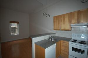 Acadia Suites- 1 Bed+LOFT in Downtown HFX! AVAIL SEPTEMBER