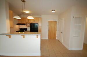 Beautiful 1 Bedroom/1 Bath, at the WSuites! Avail Feb.