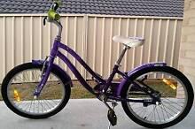 "Girls Giant 20"" Bike Bolwarra Maitland Area Preview"