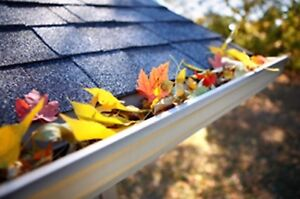Eavestrough Cleaning Services - SIGSUG