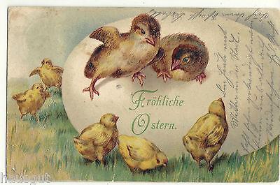 Fröhliche Ostern Spatzen auf Ei mit Küken Präge AK 1903