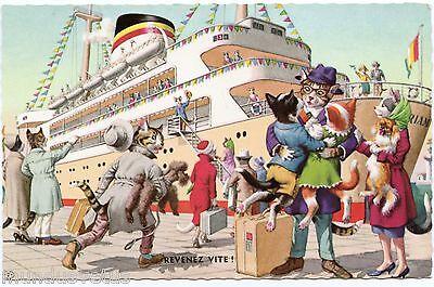 Chats humanisés . katze. gato . dressed cats . bateau. boat style a. mainzer