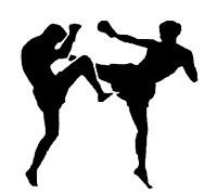 Looking for a business partner with martial arts background