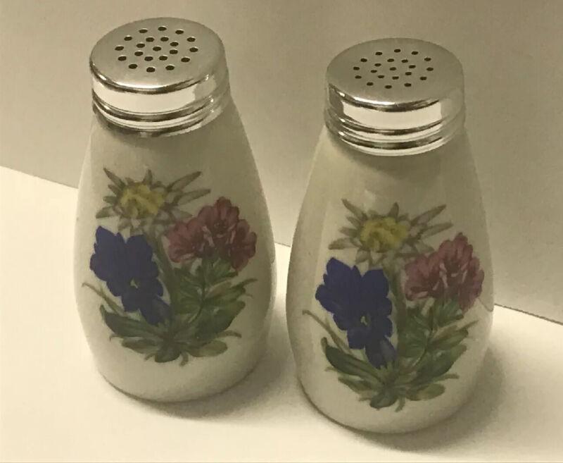 Vintage WB Hand Painted Floral Porcelain Salt & Pepper Shankers Bavaria