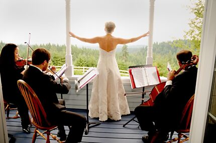String quartet services - wedding / events / functions