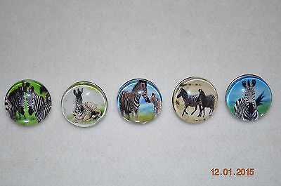 snap button charm ZEBRA covers for snap button leather bracelets & more 18-19MM