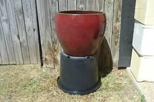 Pot Large Glazed