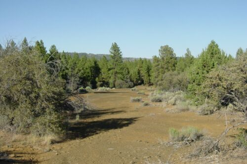 Land Klamath Falls  2.27 Acres Wooded Sprague River Klamath Forest Estates