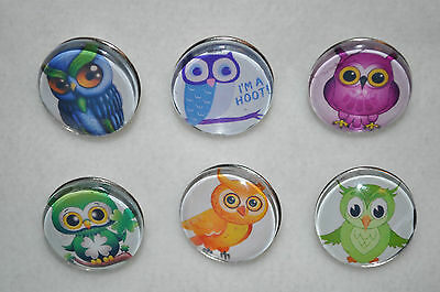 Adorable Cartoon style OWL metal snap button charms 18-19MM snap button charms