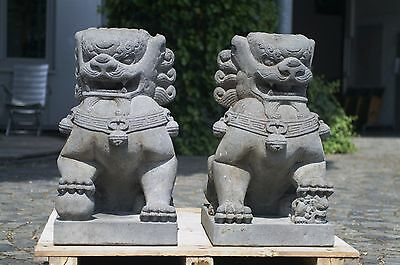 Löwen Tempelwächter handgeschlagen aus Vulkanstein meisterhafte Arbeit
