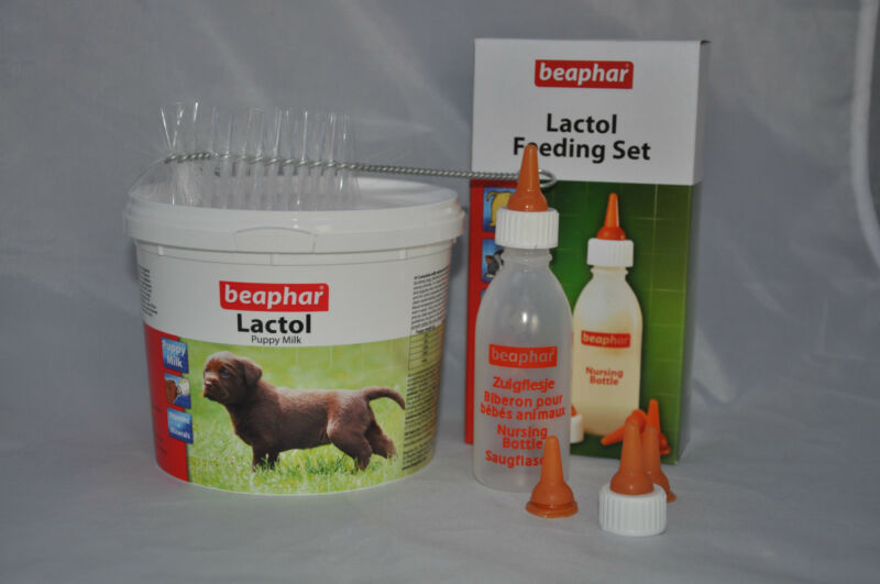 Puppy Kitten Complete Feeding Set Welpi Lactol Milk Bottle Feeding