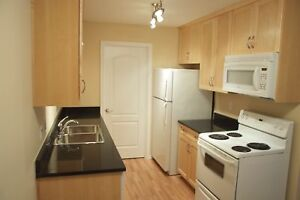 Beautiful 2 Bdrm Condo at Woodland Crossing for Rent