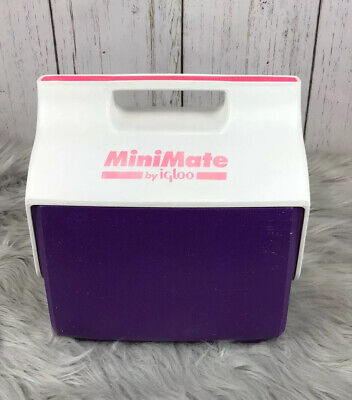 Vintage Retro Minimate Cooler by Igloo 6 pack,  Lunch Box, purple white pink