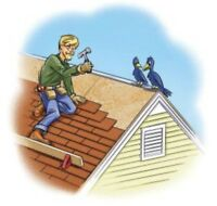 Expert Roofer and General Handyman