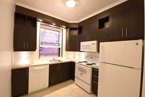 LAST UNIT AVAILABLE! 4 1/2 on Durocher and Pins (McGill Ghetto)