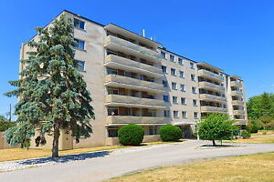 19 Lynnwood Drive - 1 Bdrm Available
