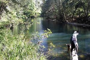 Pappinbarra Riverside Retreat Port Macquarie Region Preview