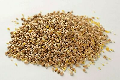 20Kg BEST Mixed Poultry Corn feed-food for Hens and Ducks FREE NEXT DAY DELIVERY