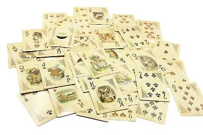 ASVP Shop Alice In Wonderland Playing Cards Party Props Decoration Theme Full