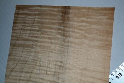 Pair Of Curly Maple Raw Wood Veneer Sheets 8 X 22 Inches 142nd F8628-40