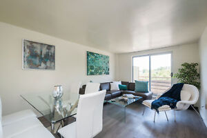Lovely Renovated One Bedroom with Modern Finishes & Green Space