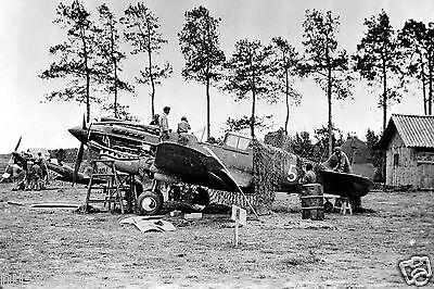 Maintenance- Curtiss P-40 by Volunteer Group Flying Tigers at Kumming China-1941