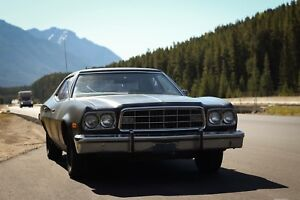 LOOKING FOR 1972-1976 Ford Torino/Gran Torino parts