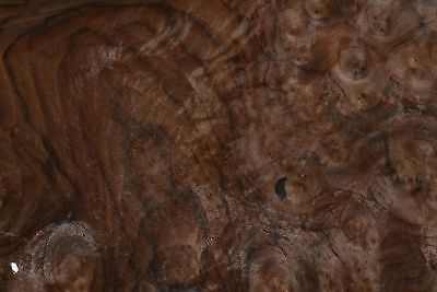 Walnut Burl Raw Wood Veneer Sheets 11.5 X 17 Inches 142nd Thick   7369-27