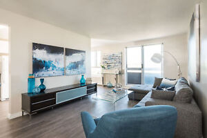 Newly Renovated One Bedroom in Kitchener Available now!
