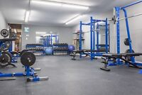 GYM SPACE FOR RENT - TORONTO