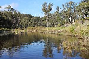 94 Acres River frontage, rural lifestyle retreat Deepwater Glen Innes Area Preview