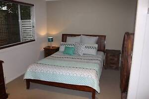 Queen Bed and Sealy Matress Coogee Eastern Suburbs Preview