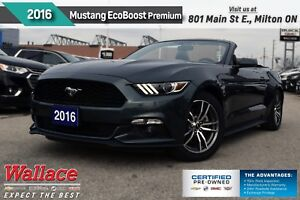 2016 Ford Mustang EcoBoost Premium/DROPTOP/310HP/HTD&CLD LTHR ST