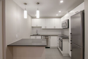 Renovated 1 Bed-  Downtown - Centre-Ville -Washer/Dryer- McGill