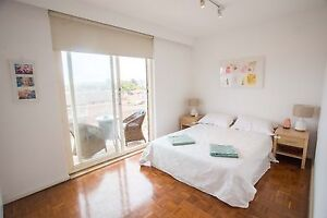 Two Bedroom large light and airy apartment North Bondi North Bondi Eastern Suburbs Preview