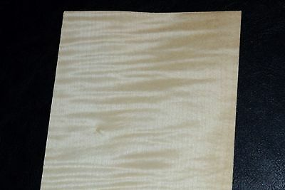 Curly Maple Raw Wood Veneer Sheets 4 X 24 Inches 142nd   8632-37