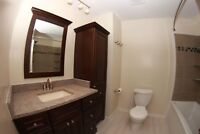 Tile installation and home renovations
