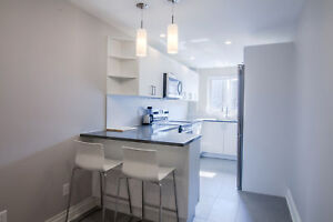 Downtown - Furnished - McGill / Concordia -Renovated 2 Bed  unit