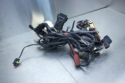 97-01 Ducati Monster 600 Main Engine Wiring Harness Loom